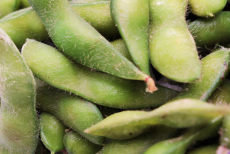 Image of Beans-Soy