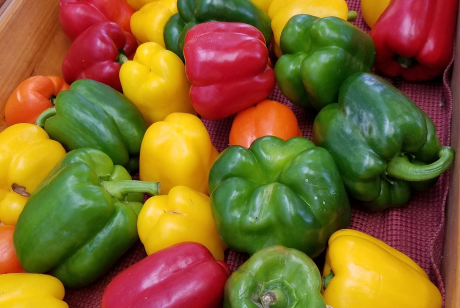 Image of Peppers-Sweet