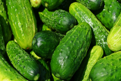 Image of Cucumbers