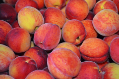 Image of Peaches/Nectarines