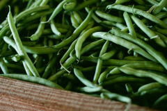 Image of Beans-Green/Wax