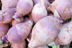 Image of Rutabaga